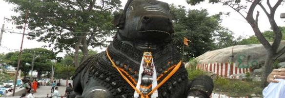 Bull Temple-My-Taxi-India