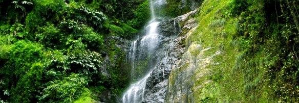 Chadwick-Falls-My-Taxi-India.jpg