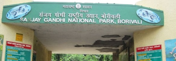 Sanjay-Gandhi-National-Park-My-Taxi-India.jpg