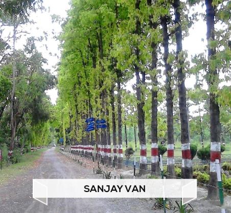 Sanjay Van.jpg